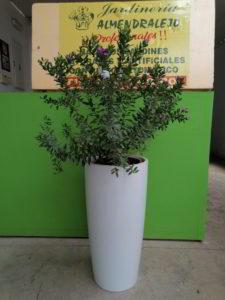 seto con flores viveros de tiza